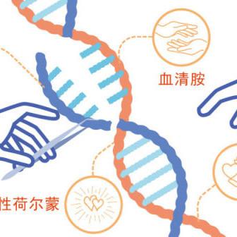 爱情基因检测